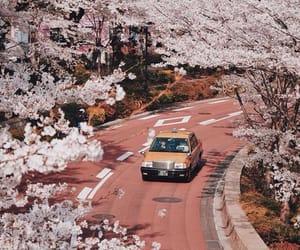 asian, beautiful, and road image