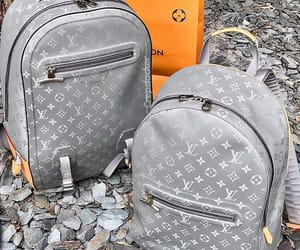 bags, vuitton, and fashion image