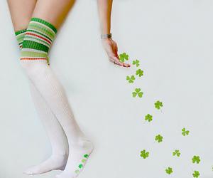 clovers image