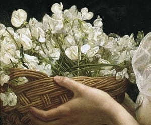 art, blossom, and detail image
