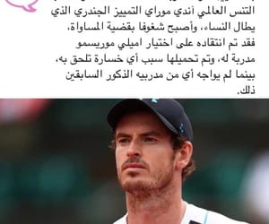 andy murray, 2014, and لاعب image