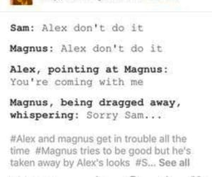 alex, beatrice, and magnus image