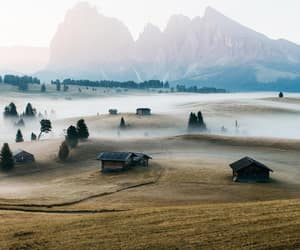 field, fog, and italy image