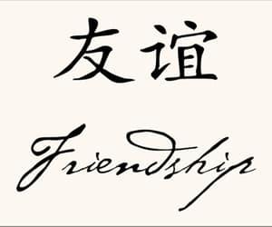 chino and mandarin image