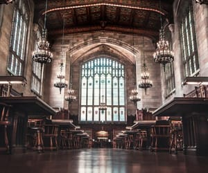 ivy league, library, and university image