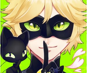 Chat Noir, miraculous, and plagg image