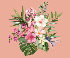 flowers, peach, and header image