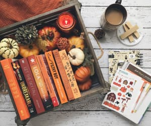 aesthetics, autumn, and book image