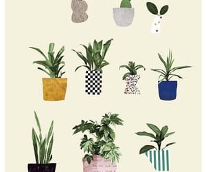 aesthetic, plants, and cute image
