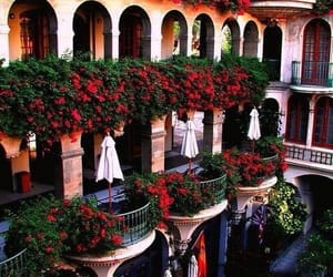 balcony, france, and flowers image