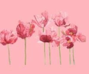 flowers, header, and pastel image