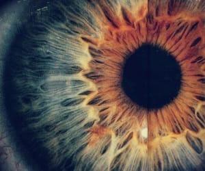 colors, eye, and ojo image