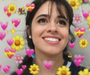 flowers, tumblr, and camila cabello image