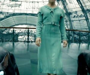 albus dumbledore, credence, and newt scamander image