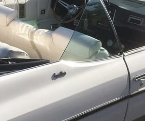 theme, car, and white image