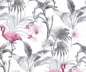 background, flamingo, and paradise image