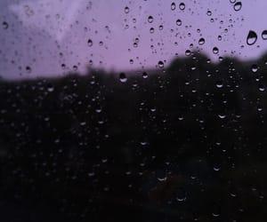 black, pink, and purple image
