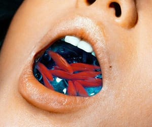 labios, peces, and lips image