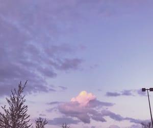 lavender, purple, and theme image