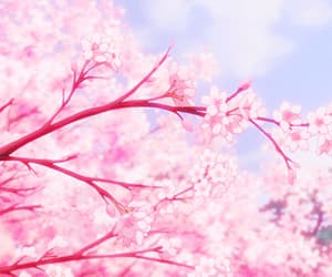 aesthetic, art, and blossoms image