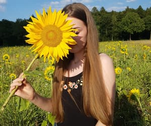blumen, flower, and nature image