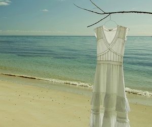 beach, branch, and dress image