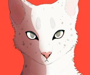 art, white, and cat image