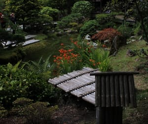canon, cloudy, and japanese image