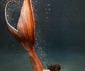 mermaid, ocean, and fantasy image