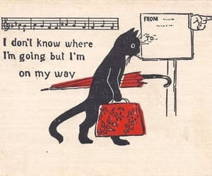 cat, art, and quotes image