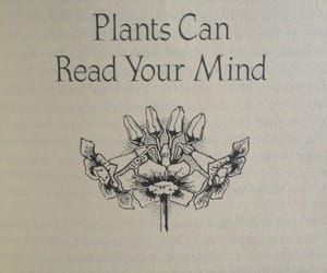 plants and book image