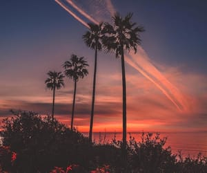 sunset, trees, and view image