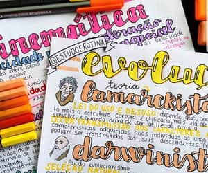 color, colores, and school image