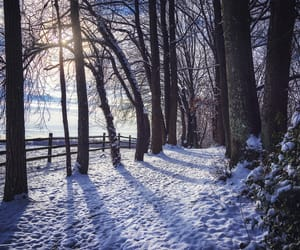 country living, landscape, and snow image