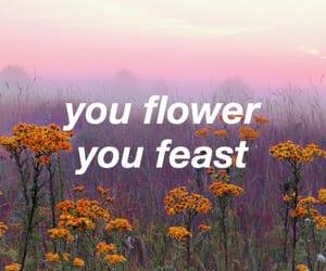flowers, Lyrics, and music image