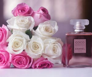 chanel, rosegold, and amor eterno image