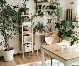dining room, earth, and plants image