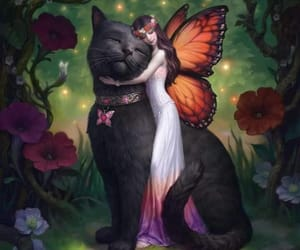 cat, art, and fairy image