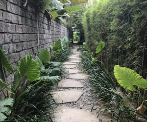 adventure, steps, and bali image