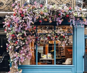flowers, london, and shop image