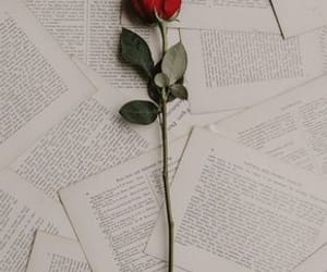 book, flower, and red image