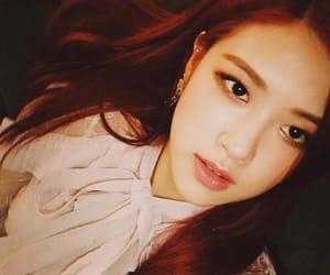 korean, rose, and selca image