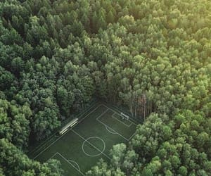 beautiful, forest, and playground image