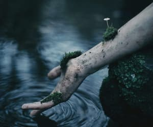water, nature, and hand image
