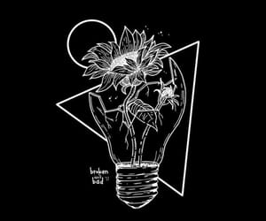 flower, beautiful, and draw image