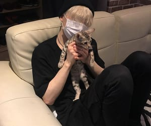 boy and cat image