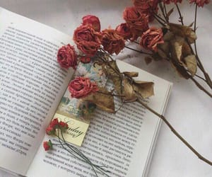 aesthetic, flowers, and book image