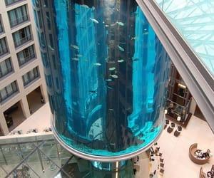 aquarium, germany, and berlin image