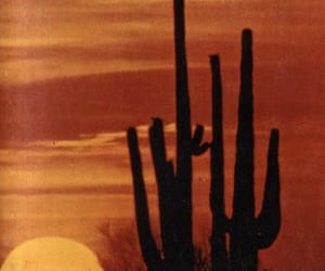 aesthetic, alternative, and cactus image