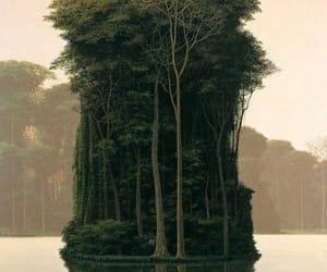 tree, nature, and Island image